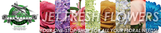 Jet Fresh Flowers your one-stop-shop for all your floral needs!